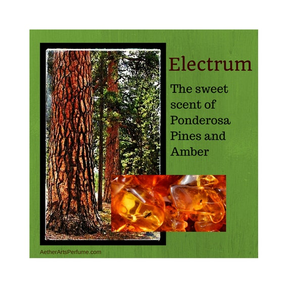 Electrum: Artisan Perfume Oil, warm, sweet and woody—a Fragrance of liquid gold—wrap yourself in the Scent of an ancient conifer forest.