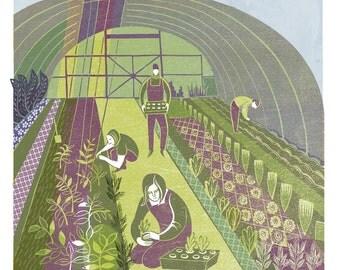 Polytunnel- Gardens Print