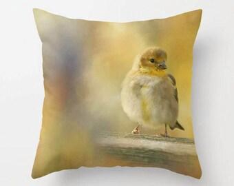 American Goldfinch, Throw Pillow, Decorative Pillow, Photo Throw Pillow, Bird Pillow, Photography, Ornithology, Bird Photography, Songbird