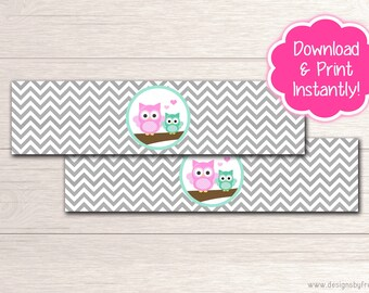 Printable Owl Water Bottle Labels - Baby Shower Decor - Pink and Mint Owl Baby Shower Package - Instant Download File - BS54