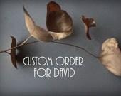 shipping upgrade for David