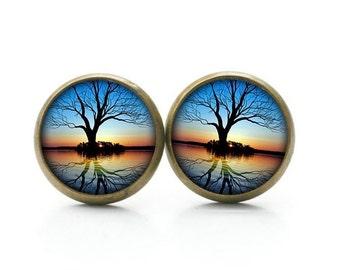 Ear studs 6-12mm sunrise tree - S12444