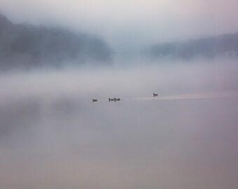 lake house decor, rustic photography, foggy lake, lake photography, calming art, large wall art, rustic decor, nature print, blue gray decor