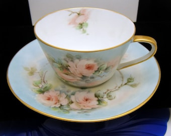 Hutschenreuther Noblesse Hand Painted Cup & Saucer Beautiful Pink Roses