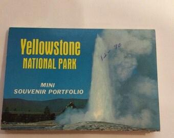 Yellowstone National Park Mini Souvenir Portfolio