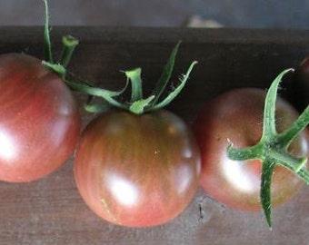 Black Aztec Cherry Tomato, heirloom  gardening seeds