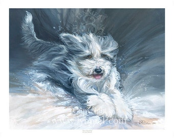 BEARDED COLLIE 'Snow Bounding' Christmas 2016 fine art dog print (2 sizes available)