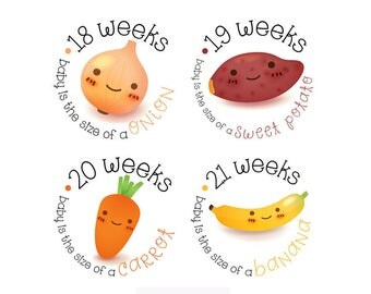 Pregnancy Stickers - Belly Stickers - Baby Bump Weekly Stickers - Maternity photo prop - Scrap book pregnancy - Pregnancy Reveal
