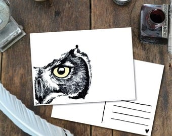Owl Eye - Postcard with Illustration, owl eye gaze ink yellow