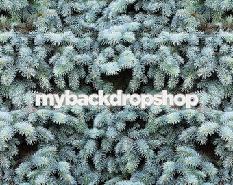 5ft x 7ft Fir Tree Photography Backdrop – Christmas Tree Backdrop for Pictures – Item 1784
