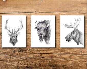Wildlife Art - Wildlife Decor -Wildlife Prints