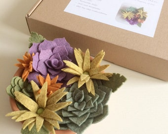 Craft kit: DIY felt succulent garden