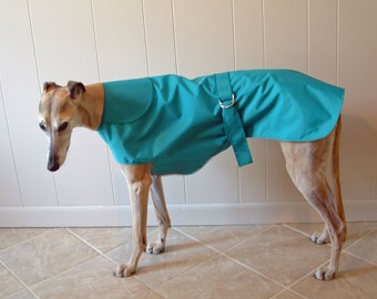 R9 Turquoise Greyhound Raincoat.  Free Shipping!