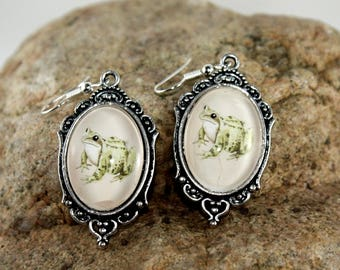 Green Frog Photo Earrings, Woodland Jewelry, Frog Art, Gifts for Girlfriend, Dainty Earrings, Woodland Art, Frog Jewelry, Frog Lovers, Frogs