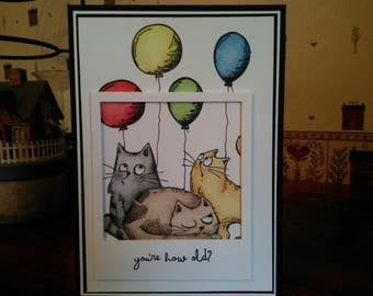 Cat Birthday 'Photo' Card, You're How Old Birthday Card