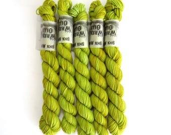 Sock Yarn Mini's Superwash Merino/Nylon 85/15 4ply Handdyed Yarn: SPROUT