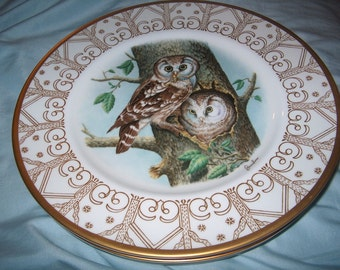 Vintage Edward Marshall  Boehm Owl Plate, Boreal Owl, Bone China, WAS 40.00 - 50% = 20.00