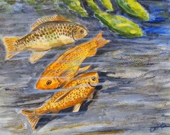 Koi Pond II (original watercolor) Fish pond painting, goldfish pond art, koi water color, koi wall art.