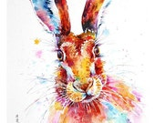 Hare : framed prints (size 12x17cms or 17x22cms)