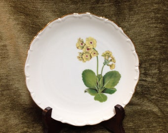 "Schumann Arzberg Yellow Floral Porcelain Plate, Marsh Marigold Plate, Bavarian Plate, Germany, 9.25"" Plate, Gold Trim, Scalloped Rim"