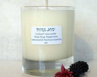 Pure joy exo soya wax candle 200ml