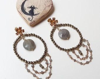 Shiny elegance earrings