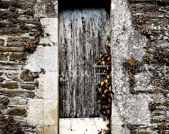 Rustic door decor, Old Door photo, rustic art, vines, stone wall, blue, brick, home decor, wood door, country decor, blue door, shabby chic