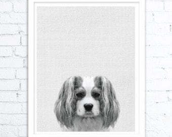 Dog Artwork, Dog Wall Art Print, Animals Wall Art, Dog Print, Gift, Dog Photo, Large Printable Poster, Digital Download