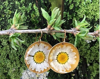 Gold brass terrarium white daisies preserved in resin earrings, love, garden, floral, nature, Mother's Day, gift, handmade