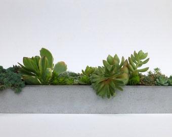 Concrete Window Sill Planter