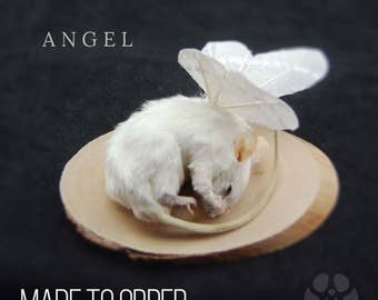 Gorgeous Taxidermy Fairy Mouse With Wings - Made To Order. Curio, Oddities, Unusual Gift, Weird, Stuffed