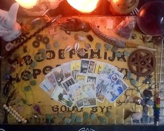 Tarot of Pagan Cats 3 Card Reading