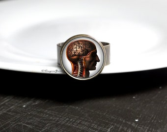 Human Anatomy Brain Ring For Brain Surgeon - RN Ring For Nurse In Training, Brain Ring Gift For Doctor, Brain Jewelry Gift For Nurse Student