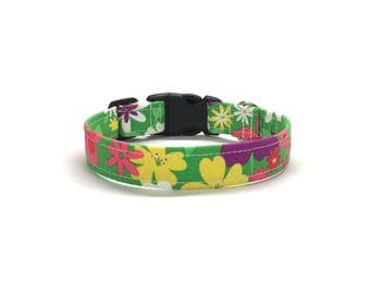 Summer Dayze Dog Collar, Floral dog collar, girl dog collar, green dog collar, flower dog collar