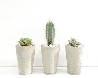 Concrete Cup Planters - Set of 3
