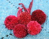 Red pom poms. Medium size...
