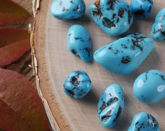 5g Natural TURQUOISE Nuggets - Polished Turquoise Stones, Raw Turquoise, Blue Turquoise, Tumbled Turquoise, Sleeping Beauty Turquoise E0352