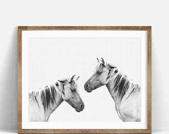 Horse Photo, Horse Print, Black and White Animal Print, Horse Photography, Equestrian Art, Black and White Horses, Horse Printable Art