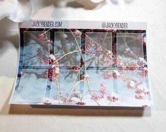 Pink Berries Full Boxes Planner Stickers Vertical Erin Condren