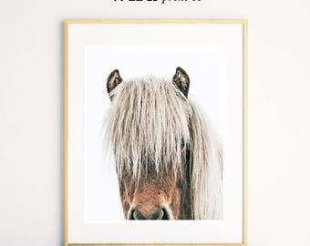 Horse Wall Art, Large Modern Prints, Horse Photography, Horse Portrait, Bedroom Wall Art, Wall Decor, Horse Prints, Modern Wall Art