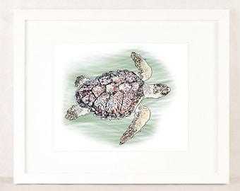 Turtle Wall Art turtle wall art | etsy