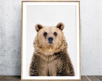Bear Print, Nice Bear, Animal Portrait, Animal Nursery Print, Nursery Decor, Woodland Animal Print, Digital Print, Fine Art Photography
