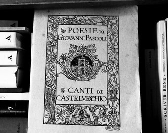 Poesie: Giovanni Pascoli; Italian Poet; Used bookstore, Boston MA; Black and white photography; office; living room; bathroom; bedroom