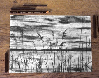 Art print charcoal drawing - landscape grasses - black and white - illustration landscape