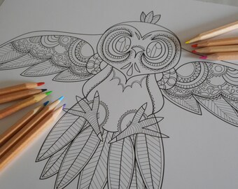 Adult Coloring poster - Owl (Digital Download)