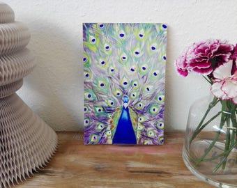 Peacock | Peacock, art print, print, print