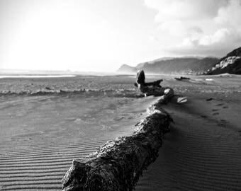 Beach Wood Photo, Pacific Northwest, Nature, Lincoln City, Oregon
