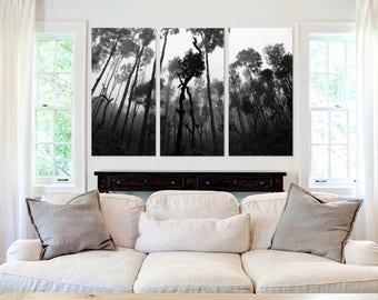 Rain Forest   - Canvas Art