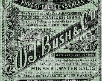 Digital Download, Ginger Ale Advert, Soda Ad England London UK, Transparent png, Digi Stamp, Antique Vintage Illustration