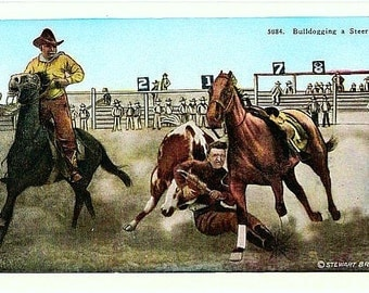 Vintage Old West Postcard - Bulldogging a Steer at the Rodeo (Unused)